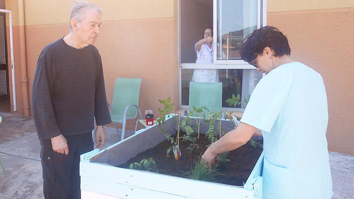 Jardinage, mis en place de nos plantes.