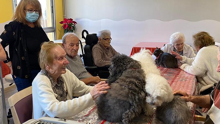 Journée médiation animale pour nos résidents à la Bastide de Pégomas