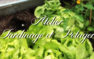 Atelier jardinage et potager pour nos résidents de la Bastide de Pégomas